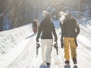 snow-1209835_640